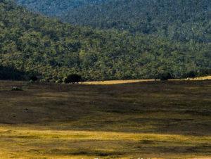 Национальный парк «Намаджи»