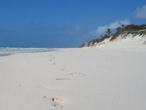 Местные пляжи